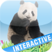 Animals' world HD - Pictures of animals in high definitiion, sounds an